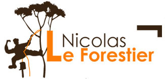 Nicolas le Forestier